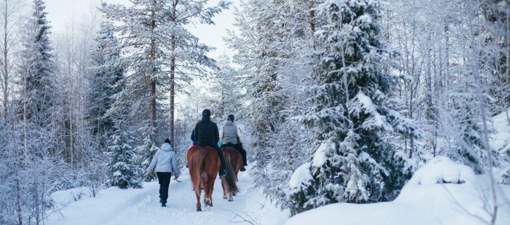 Maastoratsastusta Ruska Laukan tallilla Ruka-Kuusamossa