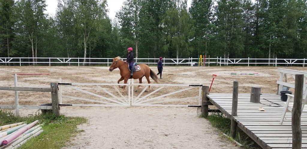 Ruska Laukan tallilla valmennus-, yksityis-, pari-, pienryhmä ja mini tunnit Ruka Kuusamossa
