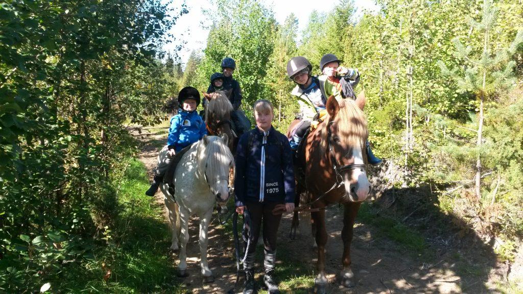 Sosiaalipedagoginen hevostoiminta Ruska Laukan tallilla Ruka-Kuusamossa