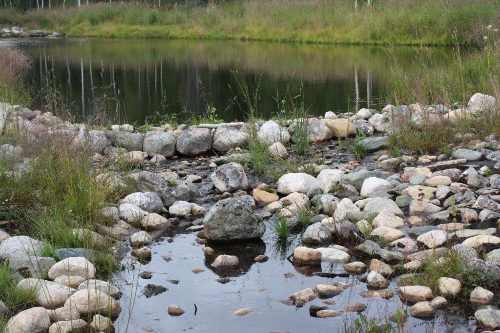 Sosiaalipedagoginen seikkailua metsässä ja veden äärellä Ruska Laukan tallilla Ruka-Kuusamossa